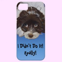 Funny Cocker Spaniel iPhone 5 Cases from Zazzle.com