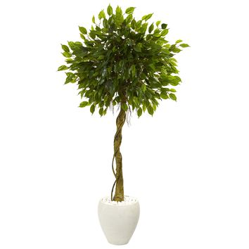 5.5' Ficus Artificial Tree in White Oval Planter UV Resistant (Indoor/Outdoor)