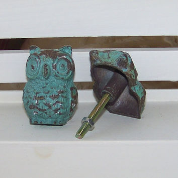 Cast Iron Owl Knob-Blue Distressed Dresser Knob-Drawer Pull-1 Knob