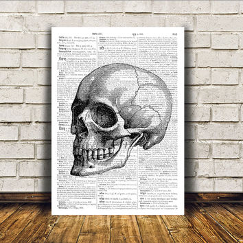 Human skull poster Anatomy art Modern decor Dictionary print RTA24