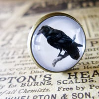 Bronze Raven Ring - Steampunk Cabochon Crow