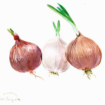 Onions painting three onions kitchen wall art minimalist kitchen painting 12 x 9 in