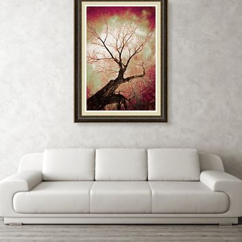 Climbing Red Fiery Framed Print