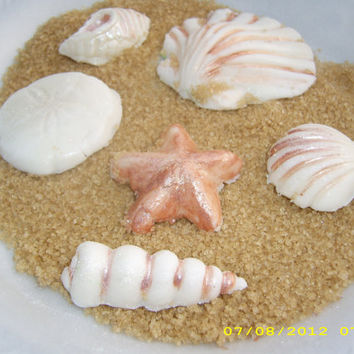 15 Edible Gumpaste Seashells