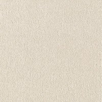 Home Decorators Collection Turbo I - Color Pearlized Texture 12 ft. Carpet-0360D-21-12 - The Home Depot