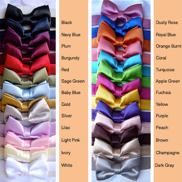 Colorful Bow Tie / Long Tie only Blue Navy Turquoise Brown Burgundy Fuchsia Green Sage Guava Lilac Orange Pink Purple Red Teal Silver Cheap