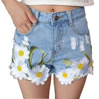 Embroidery Denim Shorts Women High Waist Shorts Jeans Floral Embroidered Jeans 2017 Womens Summer Short Femme