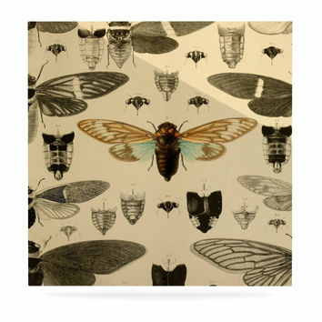 "Suzanne Carter ""Vintage Cicada"" Bugs Pattern Luxe Square Panel"