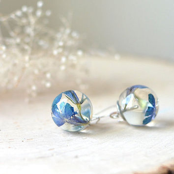 real flower earrings - resin jewelry, blue flower, nature jewelry, eco resin jewelry, gift for a woman,