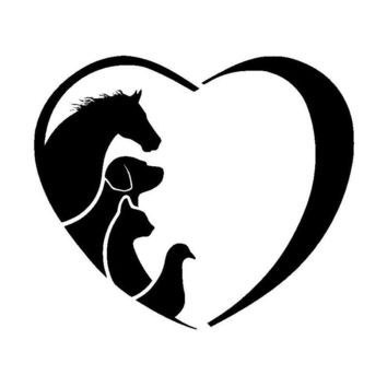 12.7*10.9CM HORSE CAT DOG VET Animal Lover Vinyl Car Sticker Creative Love Cartoon Window Decorative Decals C6-1342