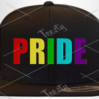 Pride Snapbacks Snapback Pride Rainbow snapbacks Snapback Hats Hat Caps Cap Totally Straight Snapbacks Snapback Hats Hat Caps Cap