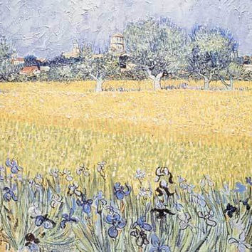 View of Arles with Irises, 1888 by Vincent Van Gogh Fine Art Print