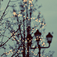 30 OFF SALE Winter Lights 5x5 Photograph  magical by ellemoss