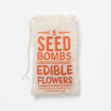 SEED BOMBS by Dept. of Everyday~BLOWOUT SALE