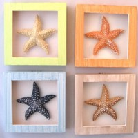 Set /4 Shadow Boxes Starfish Tropical Beach Decor New:Amazon:Home & Kitchen