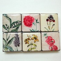 Handmade Refrigerator Magnet Set Antique Flowers Floral Nature | LittleApples - Housewares on ArtFire