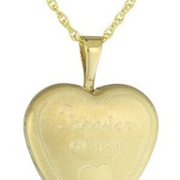 Yellow Gold Plated Sterling Silver Forever in My Heart Locket Pendant Necklace, 18""