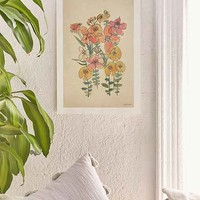 Luna Reef Sketched Flower Art Print