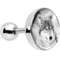 16 Gauge Blue Eyed Night Wolf Tragus Cartilage Earring
