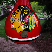 Blackhawks Birdhouse Inspired Gourd Art RESERVED CUSTOM LISTING for Promuskie Designs by Sugarbear