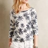 Shadow Palm Pullover by Sundry Black & White