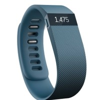 Fitbit Charge Wireless Activity & Sleep Band | DICK'S Sporting Goods