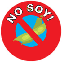 No Soy! | kidecals