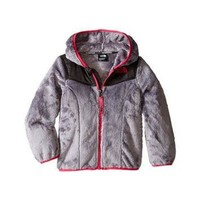 DCCKG6WU The North Face Kids Oso Hoodie (Toddler) Metallic Silver - Zappos.com Free Shipping BO