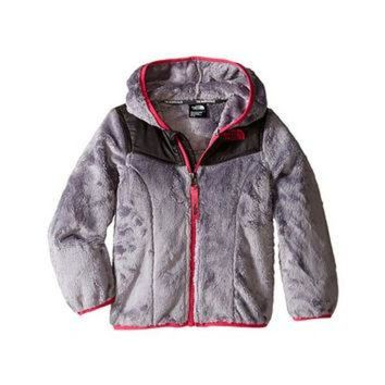 DCCKXI2 The North Face Kids Oso Hoodie (Toddler) Metallic Silver - Zappos.com Free Shipping BO