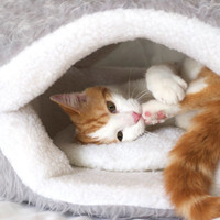 Cookie cat and small dog Bed // Many Colors