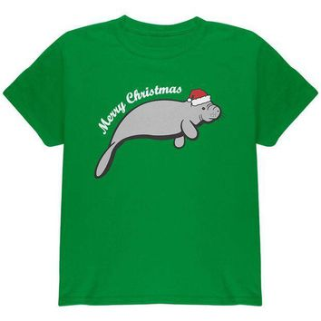 CREYCY8 Merry Christmas Manatee Floaty Potato Youth T Shirt