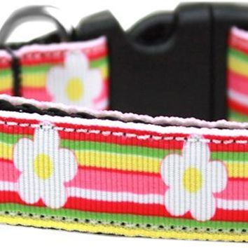 Striped Daisy Nylon Ribbon Dog Collar Xl