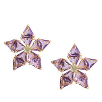 14kt Gold Amethyst Audrey Earrings