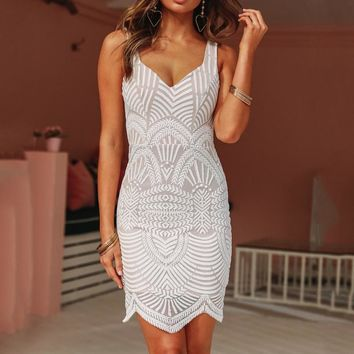 Summer Vintage lace mini slim hipdress Women 2019 white deep v Elegant women dress embroidery lace crochet retro lady dress
