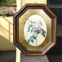 Vintage Framed Art, Vintage Wall Art, Wall Decoration Ideas, French Apartment, Botanical Prints, Rose Print, Botanical Art, Gold Framed Art