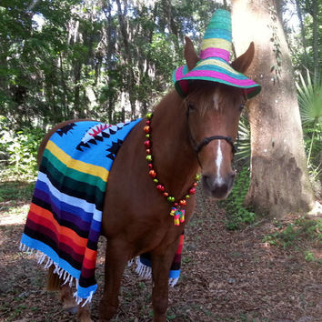 Mexican Costume for Horses - Mexican Equine Costume - Day of the Dead Equine Costume