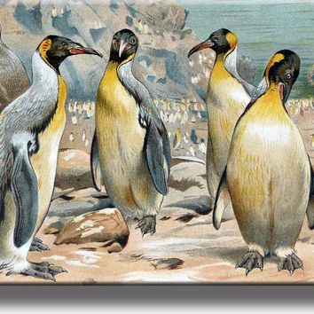 King Penguins Painting Picture on Acrylic , Wall Art Décor, Ready to Hang!