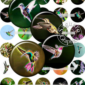 Hummingbirds Fractalius & Oil Paintings Art - Digital Collage Sheets - 1.5 inch Circles for Jewelry Makers, Party Favors, Crafts Projects