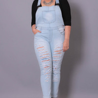 Plus Size Distressed Overall