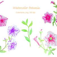 Hand painted watercolor petunia clipart instant download clipart art for greeting cards