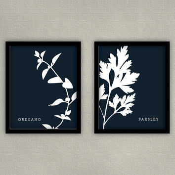 Kitchen Print Herb Illustration Art - Set of 4 8x10s - Basil, Parsley, Dill, Rosemary, Cilantro, Mint, Oregano