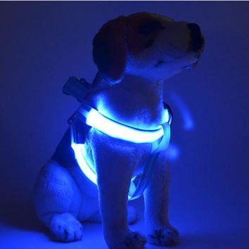 XS/S/M/L LED Flashing Light Dog Harness attractive Halloween Party Pet Puppy Harness Collar Lead Leash for Small Medium Dogs