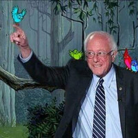 Birdie Sanders Bernie and the Birds Sticker