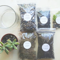 DIY terrarium kit, terrarium kit, succulent terrarium, garden supplies, terrarium supplies, valentine's day gift
