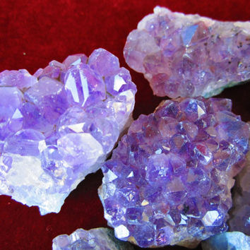 WHOLESALE 1 Lb Lot of 2 Oz AMETHYST CRYSTALS Geode Clusters Druse Mineral Grade A Natural Purple Quartz Crystals from Brazil by GeoSpecimens