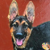 German Shepherd Dog Portrait 003
