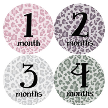 Baby Girl Monthly Milestone Birthday Stickers Style #042