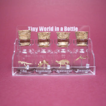 4 kinds of tiny dinosaurs in a tiny bottle in a small cool case