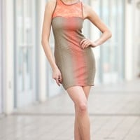 Multi-Color Lace Knit Dress    - Diva Hot Couture