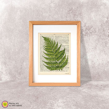 Fern print-fern dictionary print-ferns wall art-fern on book page-botanical print-rustic print-ferns set-fern poster-by NATURA PICTA-DP047